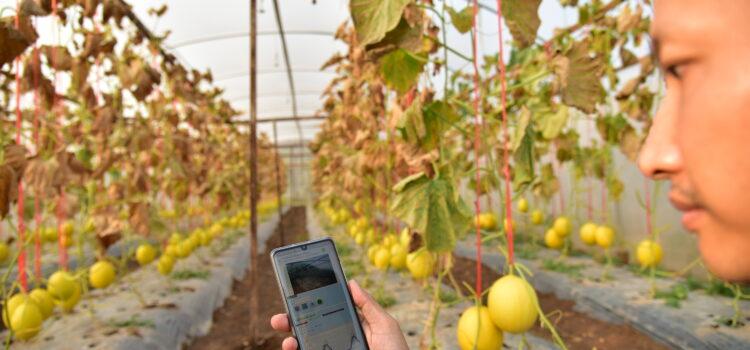 """""""ข้อมูล"""" อาวุธสำคัญของเกษตรยุคใหม่"""