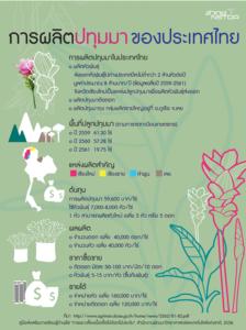 การผลิตปทุมมาของประเทศไทย