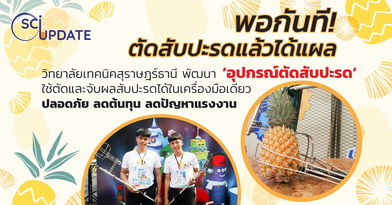Cover SCI UPDATE: 'อุปกรณ์ตัดสับปะรด' เครื่องมือช่วยเกษตรกรตัดและเก็บสับปะรดในขั้นตอนเดียว