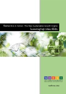 bcg book ebook