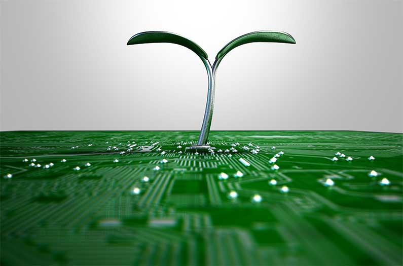 ใบไม้ประดิษฐ์: Artificial Leaf