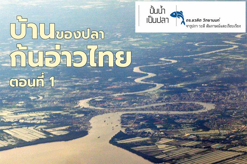 บ้านของปลาก้นอ่าวไทย ตอนที่ 1: ก้นอ่าวไทย พื้นที่เล็กๆที่ (เคย) สมบูรณ์ที่สุด