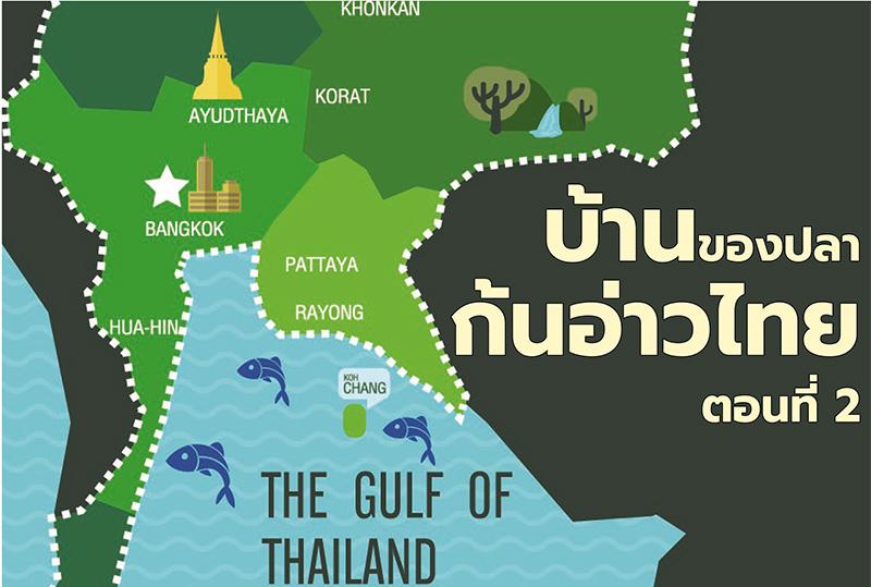 บ้านของปลาก้นอ่าวไทย ตอนที่ 2: ปลา 380 ชนิด จาก 91 วงศ์ และ 36 อันดับ